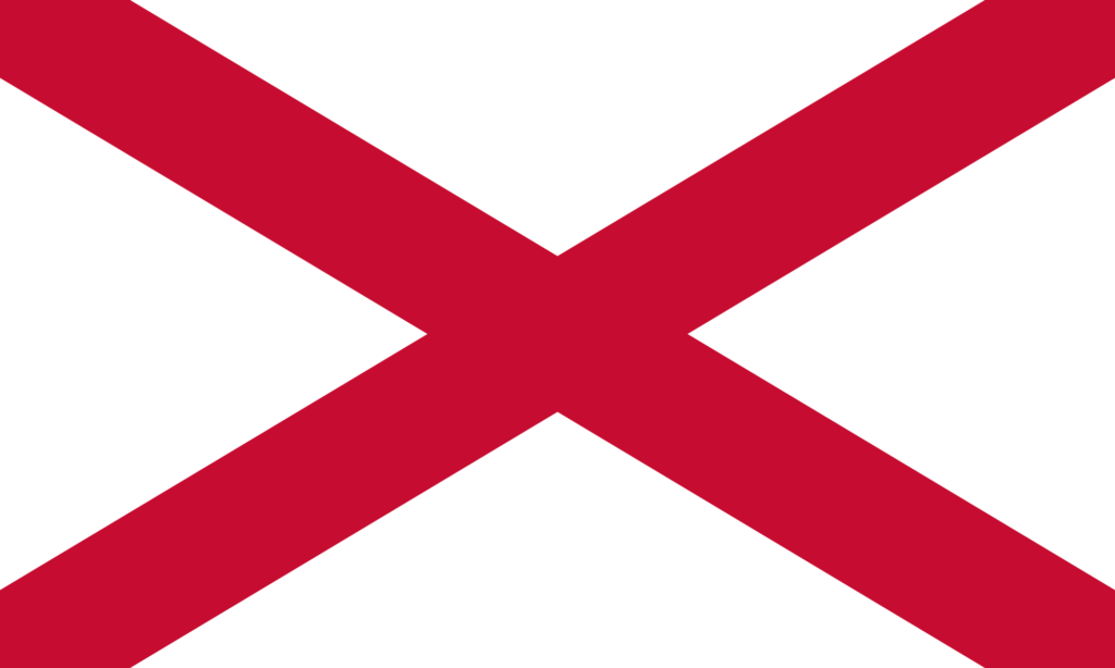 The actual Saint Patrick's Flag is a red and white saltire design, and his colour was blue.