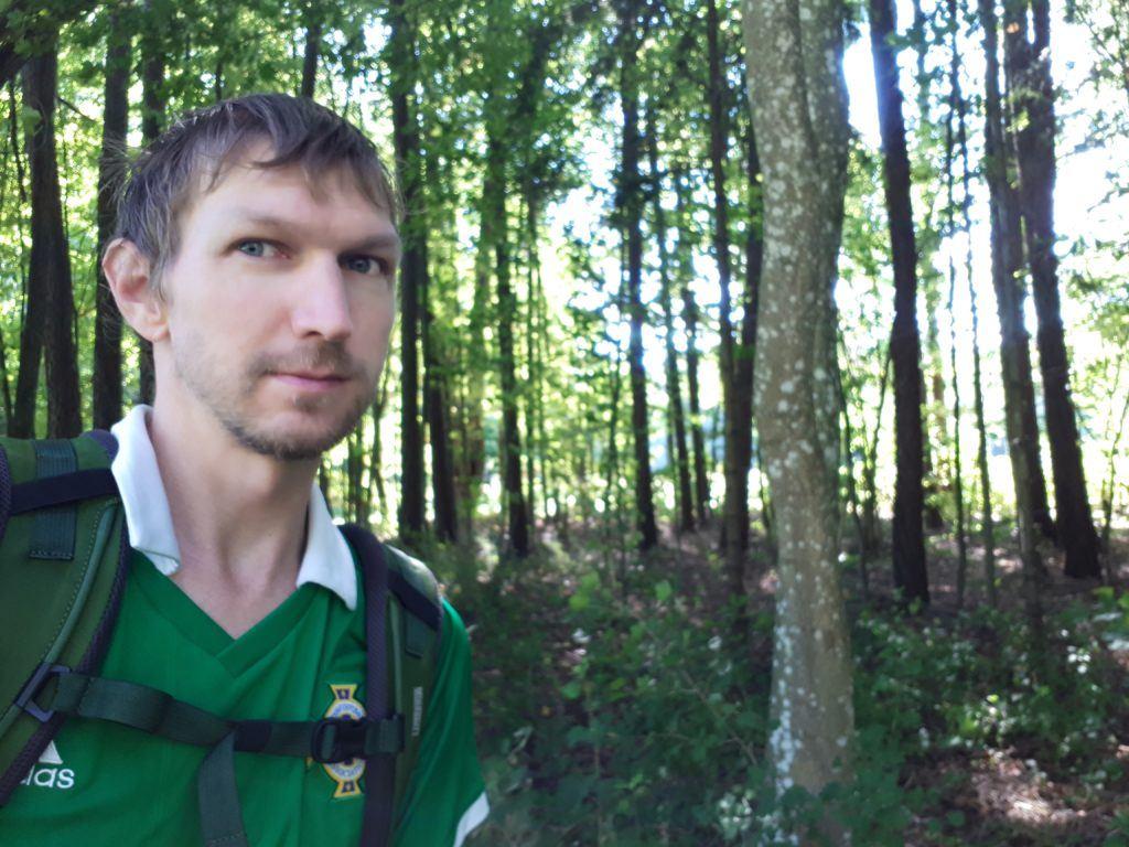 Dziwaczne Odkrycia: A Guide to Poland's Białowieża Primeval Forest